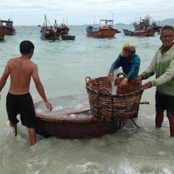 Retour de pêche à la méduse