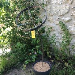 Metalicum pelargonium, sculture en acier et laiton